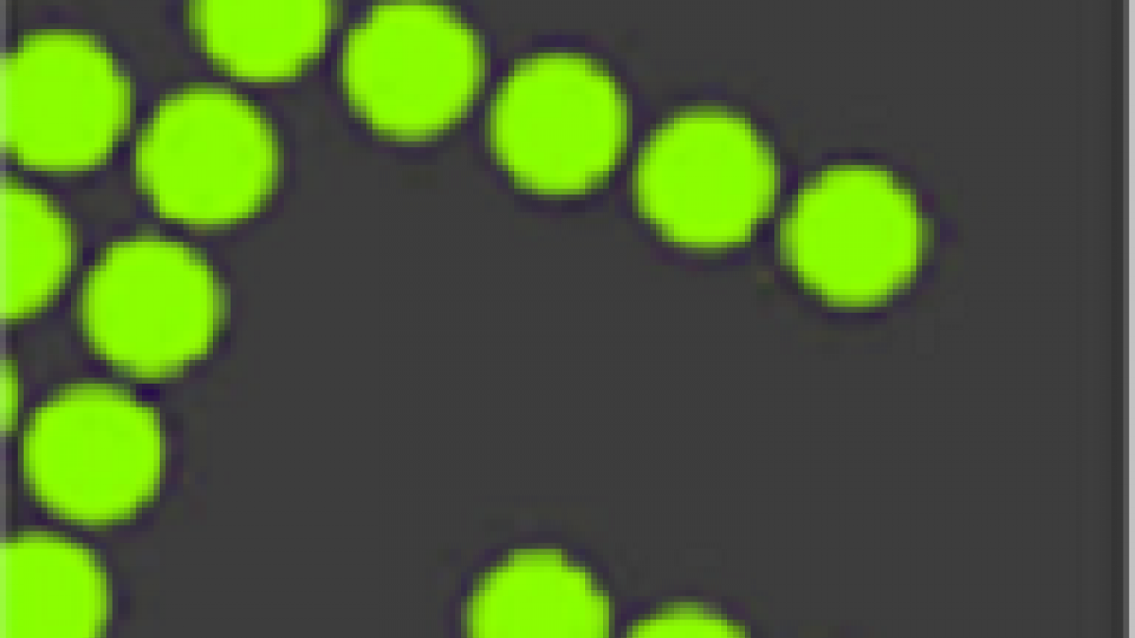 ADMIN IT - Take Screenshots with Greenshot on Windows